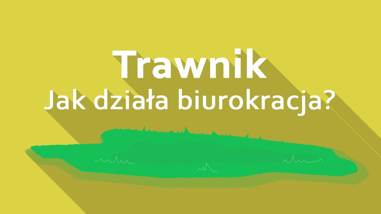 trawnik-min